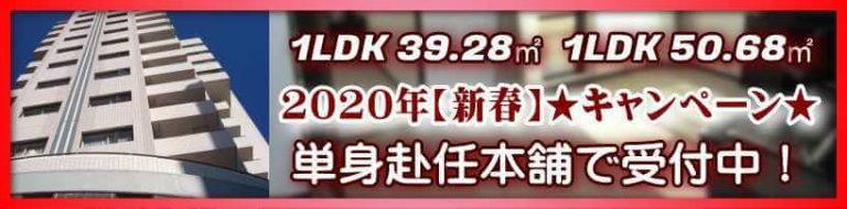 1LDK【広い部屋】キャンペーン
